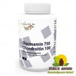 Glucosamin 750mg Chondroitin 100mg 100 Kapseln