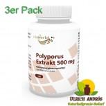 3er Pack Polyporus Extrakt 500mg 300 Kapseln