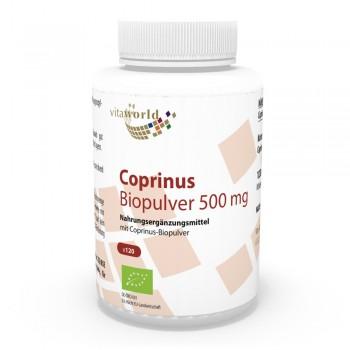 Coprinus Pulver Bio Qualität 500mg 120 Kapseln