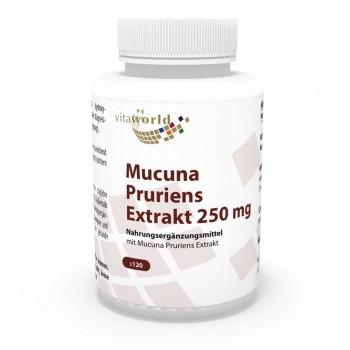 Juckbohne - Mucuna Pruriens Extrakt 250mg 120 Vegi Kapseln