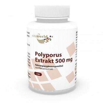 Polyporus 500mg 100 Capsule