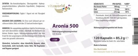 Aronia 500mg Concentrado + Zinc y Selenio 120 Cápsulas