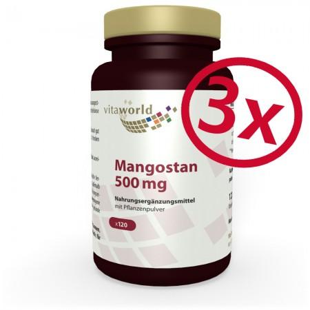 Pack de 3 Mangoustan 3 x 120 Capsules Végétarienne / Végétalienne