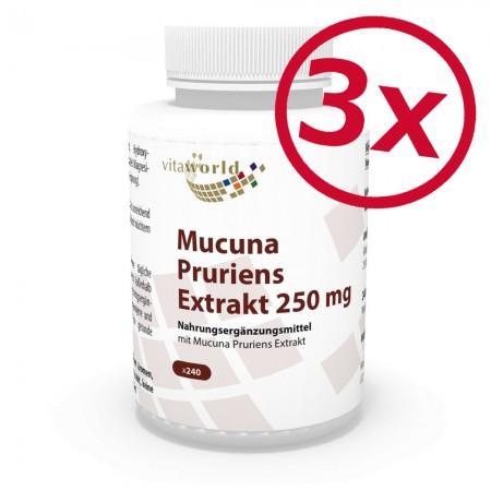 3er Pack Juckbohne - Mucuna Pruriens Extrakt 250mg 3 x 240 Kapseln Vegetarisch/Vegan