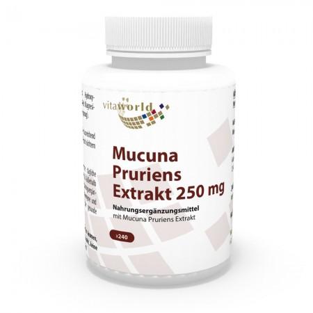 Discount 6+1 Mucuna Pruriens extract 250mg 7 x 240 Capsules Vegetarian / Vegan