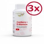 3er Pack D-Mannose + L-Methionin + Cranberry 3 x 90 Kapseln