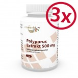 3 Pack Polyporus extract 500mg 300 Capsules
